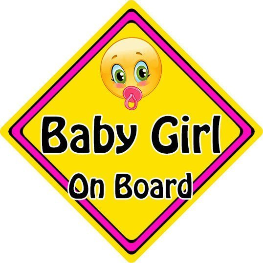 Non Personalised Child//Baby On Board Car Sign ~ Nieces On Board ~ Pink